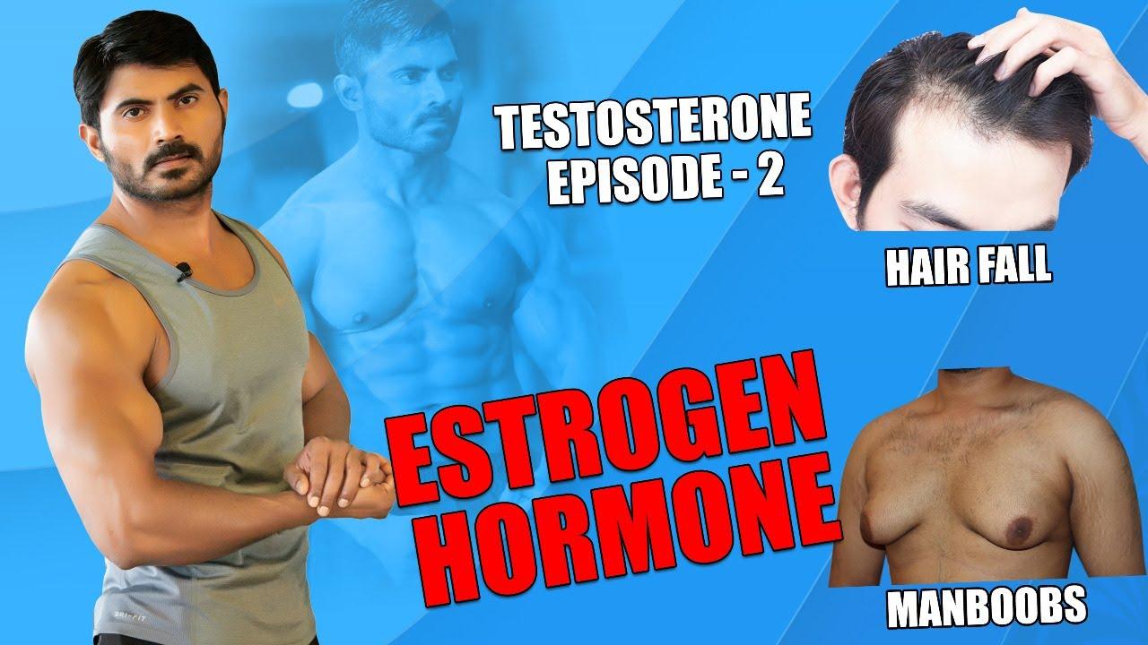 What is Estrogen Hormone In Telugu