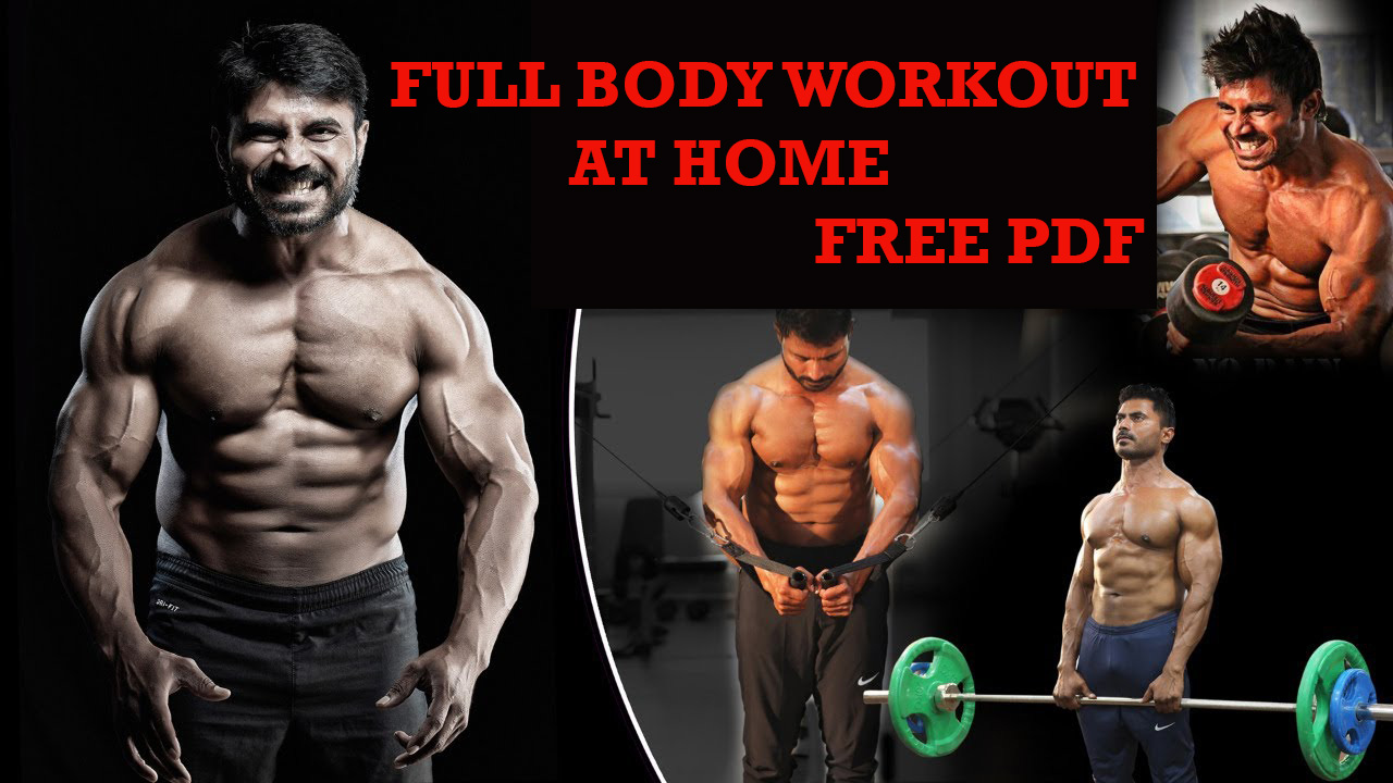 full body workout at home pdf