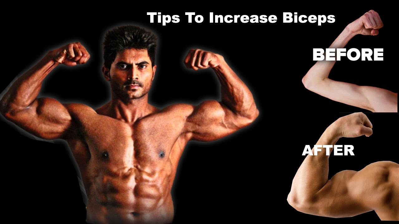 Simple Tips to increase Biceps