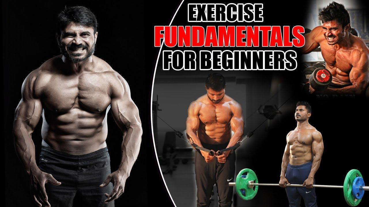 Training Fundamentals for Beginners